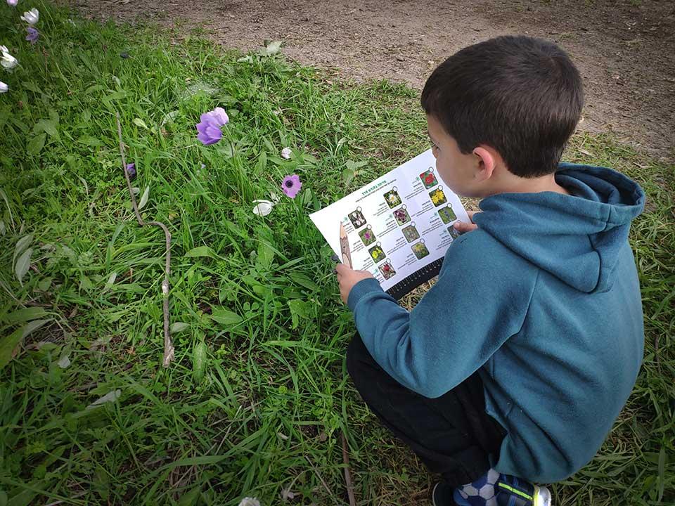 מגדיר פרחים לחודש מרץ של GoNature