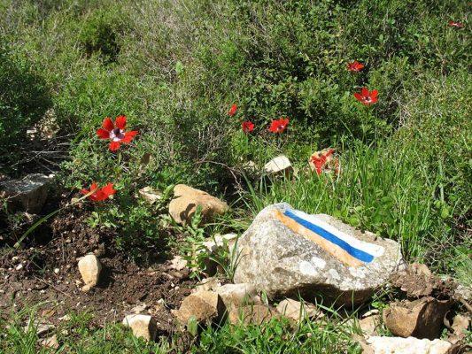 10 פריטים שאתם חייבים איתכם על שביל ישראל