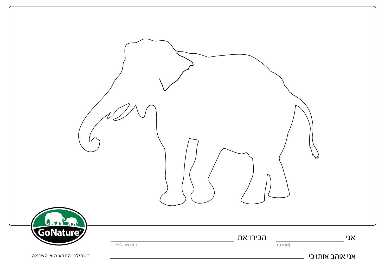 דף צביעה להדפסה ליום הפיל הבינלאומי 2021